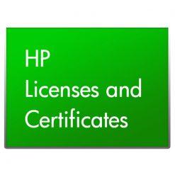 HP Microsoft MS WS12 CAL 5 USR